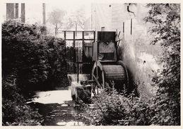 Photo Originale Moulin Molen Bavegem ( Hautem Saint Lievin ) - Lieux