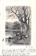 [DC10051] CPA - BELLISSIMA CARTOLINA  - SCORCIO - Viaggiata 1904 - Old Postcard - Cartoline
