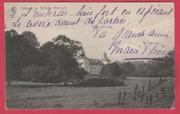 Bléhen ( Hannut ) - Le Château - 1913  ( Voir Verso ) - Hannut
