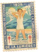 Grand Timbre Affiche Anti-tuberculeux Pour Vitrine, Voiture 1929. Tuberculose Antituberculeux - Erinnofilia