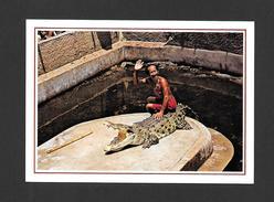 ANIMALS - ANIMAUX - SAMUT PRAKAN CROCODILE FARM & ZOO THAILAND - CROCODILES SHOW - Animaux & Faune