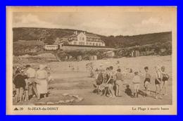 Saint Jean Du Doigt * La Plage à Marée Basse    ( Scan Recto Et Verso ) - Saint-Jean-du-Doigt