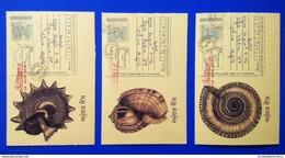 Postally USED Prepaid Postal Postcard Set - Sea Shell Shells - Coquillages