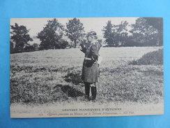 172.GRANDES MANOEUVRES D'AUTOMNE.  Officiers Prussien En Mission,sur Le Terrain D'Opérations. - Manoeuvres