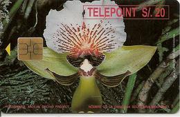 CARTE-PUCE-PEROU-TELEPOINT-ORCHIDEE-TBE-RARE - Fleurs