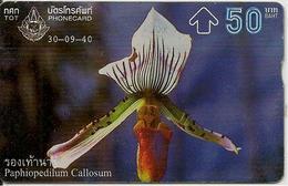 CARTE-HOLOGRAPHIQUE-50Baht-ORCHIDEE-TBE-RARE - Fleurs