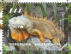MK 2017-05 PETS IGUANA, MACEDONIA MAKEDONIJA, 1 X 1v, MNH - Mazedonien