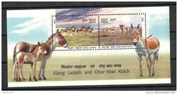 India,  2013,  Wild Ass Of Ladakh And Kutch, Set Of 2, Miniature Sheet,  MNH, (**)