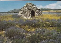 84   ?---Les Belles Images De Provence---village Des Bories Dans Les Lavandes--voir 2 Scans - France