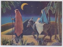 POSTCARD 3D Plastic Post Card - Christmas, Animals At Night - Postcards