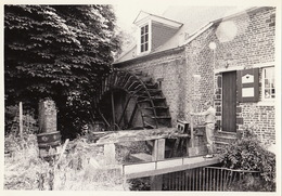 Photo Originale Moulin Molen Te Leefdael à Aarschot - Lieux