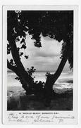 (RECTO / VERSO) BARBADOS - BARBADE - N° 40 - ROCKLEY BEACH - CARTE PHOTO - BEAU CACHET ET TIMBRE - CPA VOYAGEE - Postcards