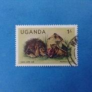 1983 UGANDA FRANCOBOLLO USATO STAMP USED - Fauna Animali Leoni 1 - Uganda (1962-...)