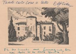 6571.   Castello Di Cereto - Carpaneto - Piacenza - 1966 Al Conte Leopardi Dittajuti Torino - Italia