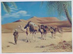 POSTCARD 3D Plastic Post Card - Camels - Postcards