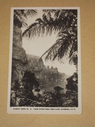 Cpa Carte Photo Australie Murray Views N°41 - Three Sisters From York Caves, Katoomba, N.S.W. Australia - Australie