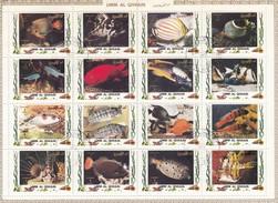 UMM-AL-QIWAIN  - FEUILLET 16 TIMBRES VIE MARINE - FISCHES  / TB - Vie Marine