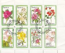 REPUBLICA DE GUINEA EQUATORIAL   - FEUILLET 8TIMBRES FLEURS - FLOWERS  / 6244 - Végétaux
