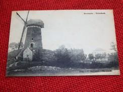 DOORNZELE  -  Molenhoek  -  1923