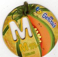 Magnets Magnet Alphabet Gervais Melon M - Letters & Digits