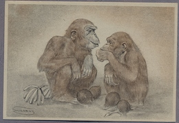 "Artist Signed By ""Swildens"" Monkeys D796 - Otros Ilustradores"