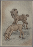 """Artist Signed By """"Swildens"""" Horse D797 - Caballos"""