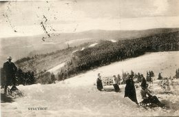 LUGE(STRUTHOF) - Winter Sports