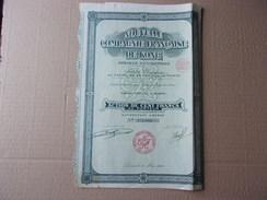 NOUVELLE COMPAGNIE FRANCAISE DE KONG (afrique Occidentale) Capital 50 Millions(1929) - Shareholdings