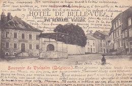 Souvenir De Vielsam - Hôtel De Belle-Vue (précurseur, 1902, Kiosque) - Vielsalm