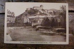 65, LOURDES, LE CHATEAU FORT ET LE GAVE DE PAU - Lourdes