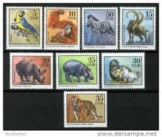 Germany GDR 1975 Animals Mammals Big Cat Rhinocero Marine Life Animal Zoo Nature Mammal Stamps MNH Michel 2030-2037