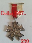 Medaille :Netherlands-W.S.V Riessen / Rijssen - Walking Club Rijssen - Otros