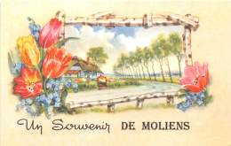 60 - OISE / Fantaisie Moderne - CPM - Format 9 X 14 Cm - MOLIENS - France