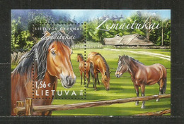 Race De Poney Žemaitukas De Lituanie. Un Bloc-feuillet Neuf ** Année 2016 - Horses