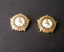 1970s USSR Russia Ready For Civil Defense And Labor IV Degree Pin Badges - Russia