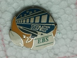 PINS 12 - TRANS EURO NUIT, TEO - Transports