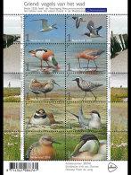 2016 - Netherlands / Holland - Birds Of Dutch Wetlands And Sea Shores -sheetelt Of  10v Paper - MNH**