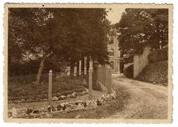 Collège N.D. De Bellevue - Dinant - Le Chemin D'arrivée - 2 Scans - Dinant