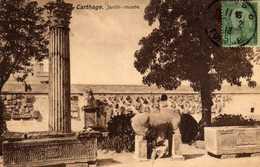 CARTHAGE - Jardin-Musée - CPA 1913 - TBE - Túnez