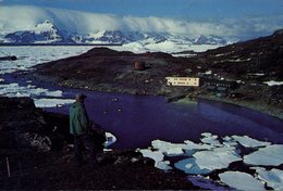 ANTARCTIC - SIGNY ISLAND - BRITISH ANTARCTIC SURVEY'S BIOLOGICAL LAB - Postcards