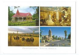 Oudtshoorn South Africa - Afrique Du Sud