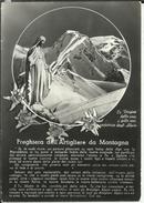 S 48 - CARTOLINA RELIGIOSA VIAGGIATA 1961 - Images Religieuses