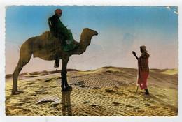 """C.P.  PICCOLA    COLLECTION ARTISTIQUE """"L' AFRIQUE""""  DANS  LE  GRAND  DESERT     2 SCAN    (SCRITTA) - Cartoline"""