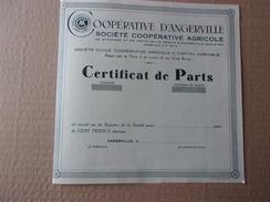 COOPERATIVE D'ANGERVILLE (certificat) - Aandelen