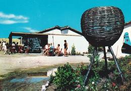 ITALIE---ROVIGO--ROSOLINA MARE--terrasse Du Bar--village De Vacances Du T. C. F.---voir 2 Scans - Rovigo