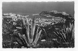 (RECTO / VERSO) MONACO EN 1955 - VUE SUR LA TURBIE - CACHET ET TIMBRE DE MONACO - FORMAT CPA VOYAGEE - Monaco