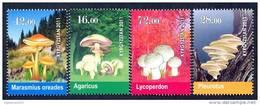 Kyrgyzstan 2011 Mushrooms. 4 V**