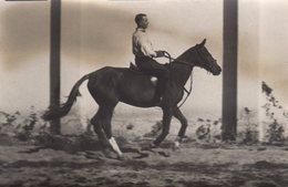 Carte Photo Originale Cheval & Cavalier - Monter à Cheval Avec Classe Vers 1910/20 - Personnes Anonymes