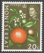 Montserrat. 1965 QEII. Vegetables, Fruits And Plants. 20c Mint Hinged. SG 169 - Montserrat