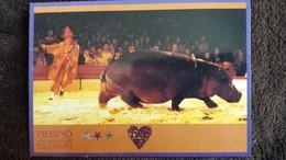 CPM CIRQUE PIERINO CLOWN CIRCUS KRONE HIPPOPOTAME ALLEMAGNE - Circus